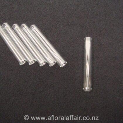 Glass Test Tube x 20  10 x 75