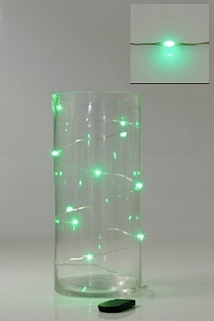 LED Seed Light 1m Green