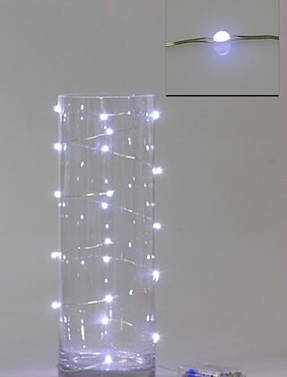 LED Seed Light 2m White