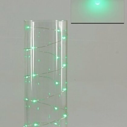 LED Seed Light 2m Green